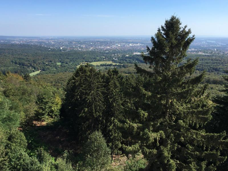 Aussicht vom Kaiser-Wilhelm-Turm