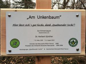 Unkenbaum_2