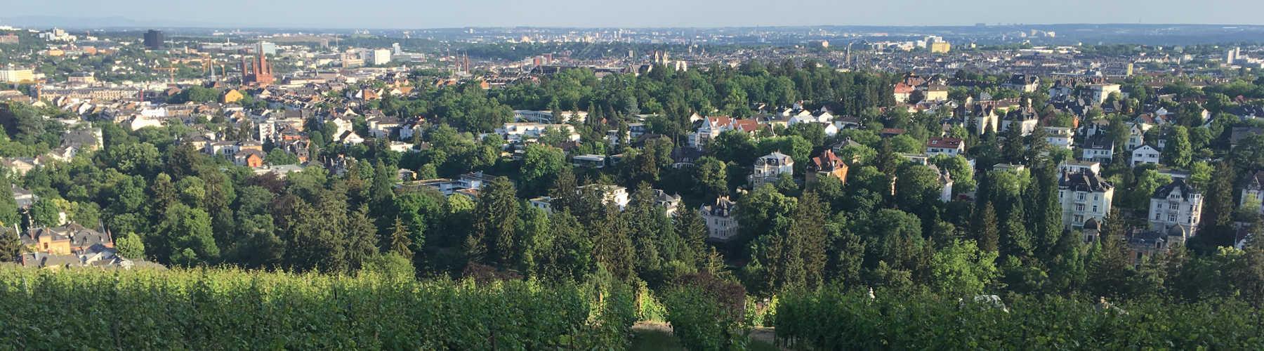 Rhein-Taunus-Klub